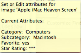 The FileMaker Tooltip which appears as result of script below