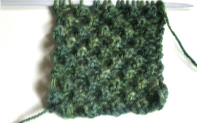 A close up view  for the Bramble Stitch