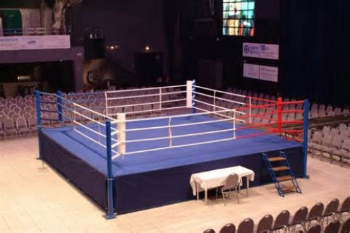 The boxing ring is where the truth comes out. Inside the squared circle it is you, your opponent and the referee.