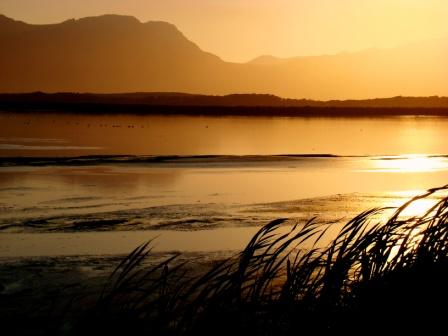 Strandfontein Cape Town
