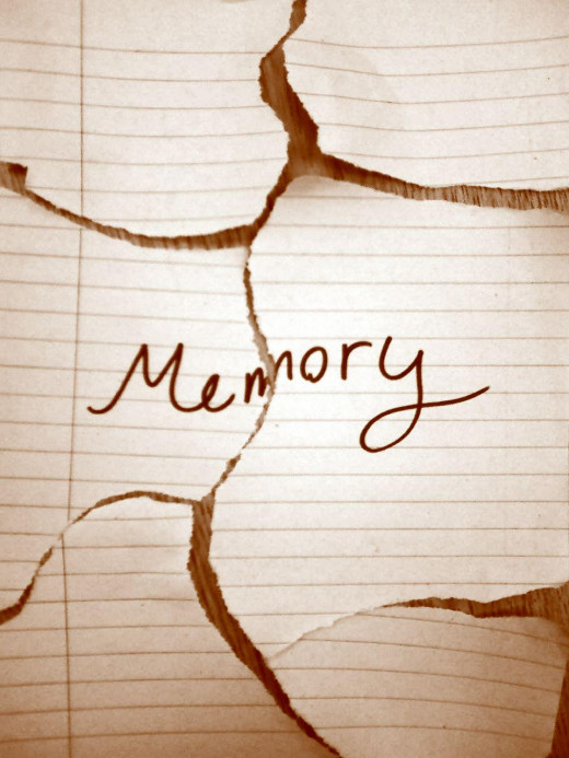 Your memory is incredibly important - take care of it!