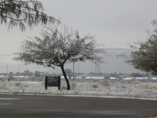 Looking west from campus and across the river toward homes and the not so distant Tucson Mountains all covered with snow.