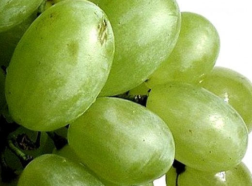 Grapes and many fruits come in natural edible packages which should be used to inspire the development of artificial edible packages for many foods and beverages for enjoyment and to save waste