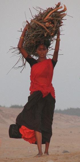 A Tribal Girl Fetching Wood