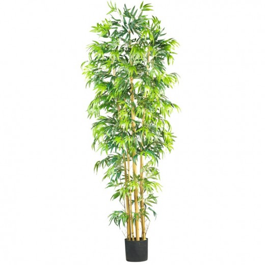 Artificial bamboo trees are a favorite of designers worldwide because of the real bamboo stalks used. These are the trees with the most natural appearance and materials used in manufacturing. The best part is this keeps the cost down.