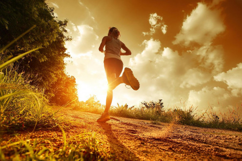 Feel free to jog in the morning, afternoon, or night.