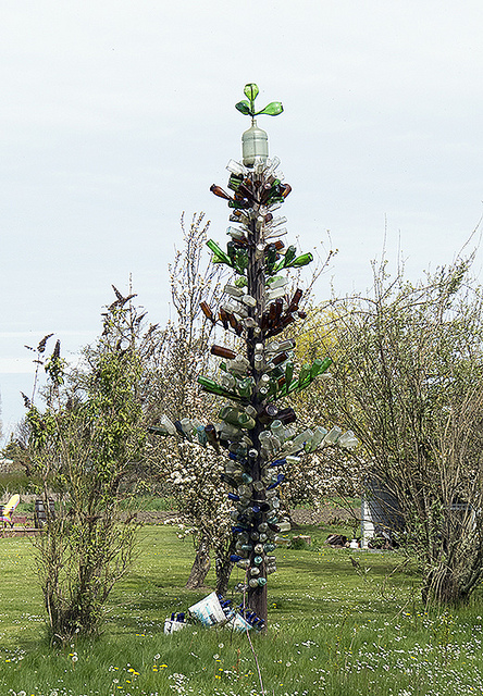 A bottle tree in modern times in Washington state.