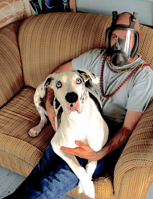 Author's brother hanging out with his Great Dane, hoping to not get sick like the rest of the family.