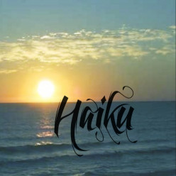 Flowers - Haiku