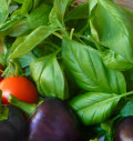 How to Care for Sweet Basil
