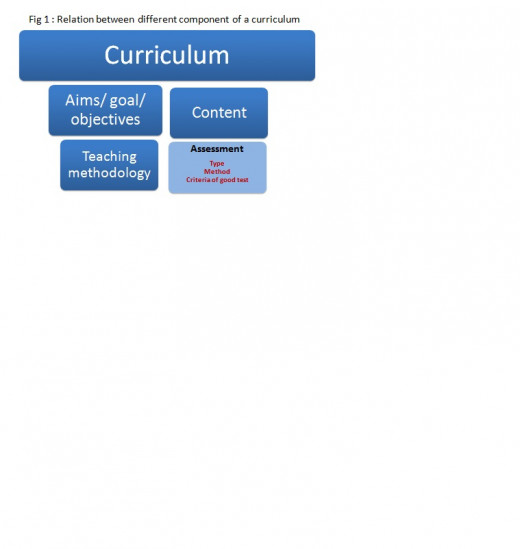 Curriculum the learning experience related with different component