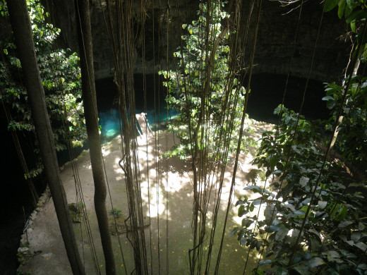 Looking down into the cenote