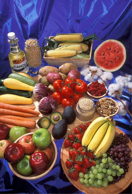 An example of some common GMO foods.