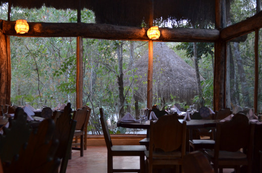 For an excellent meal try the restaurant at Hotel Puerta Calakmul located off the highway near the entrance to the bio-reserve.