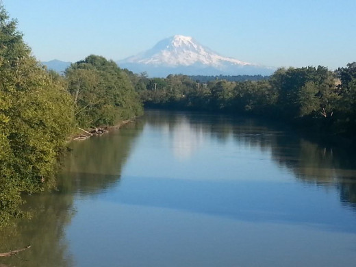 Mt. Rainier reflected in the Puyallup River