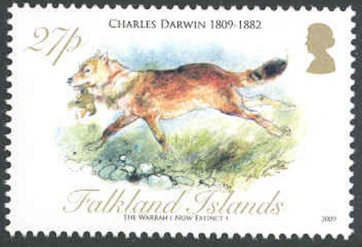The Falkland Islands wolf was featured in a set of stamps for Darwin's bicentennial