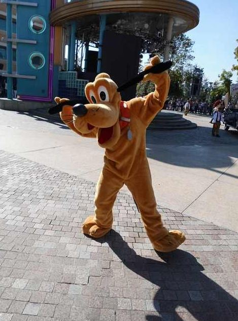 If you have an autograph book handy, Pluto would be happy to give you his autograph.