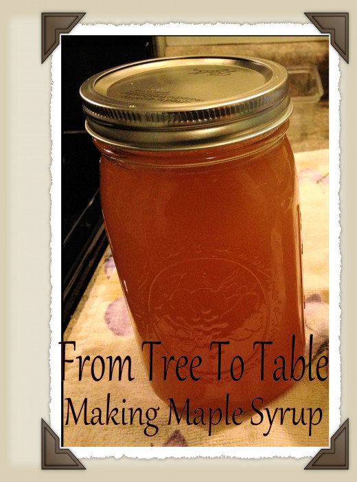 How to Produce Your Own Maple Syrup