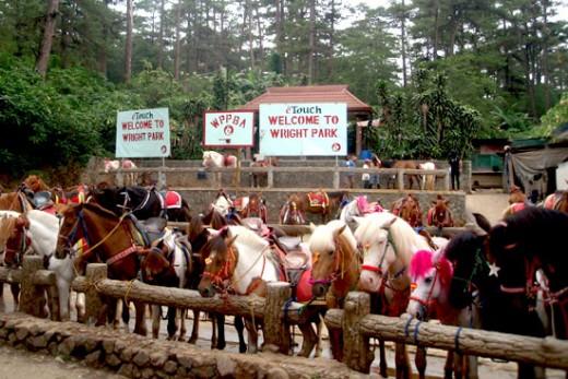 Go horseback riding at the Wright Park