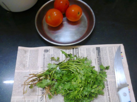 Tomatoes and Coriander leaf bunch
