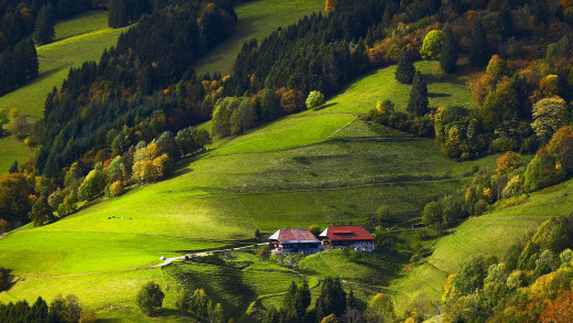 Source:http://1ms.net/black-forest-germany-384767.html