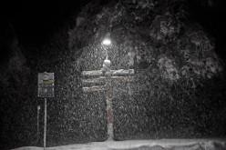 A Snowy Walk