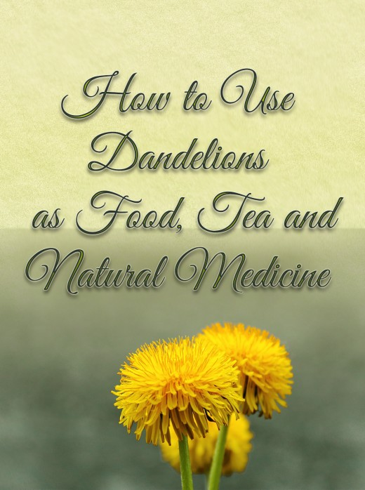 Dandelions are not weeds! They are medicine!