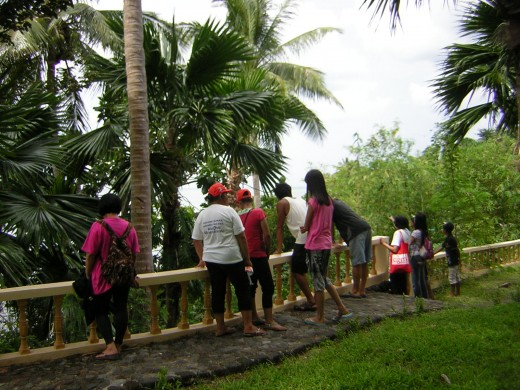 Tourists and locals enjoying the view of Mayon from an Island.