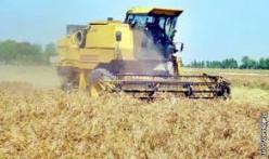 Older model wheat combine