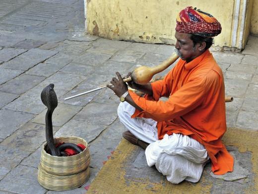 Snake Charmer - Jaipur - India