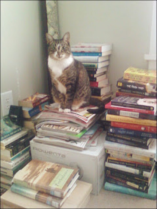 Keep your beloved feline, but do you need all of these books?