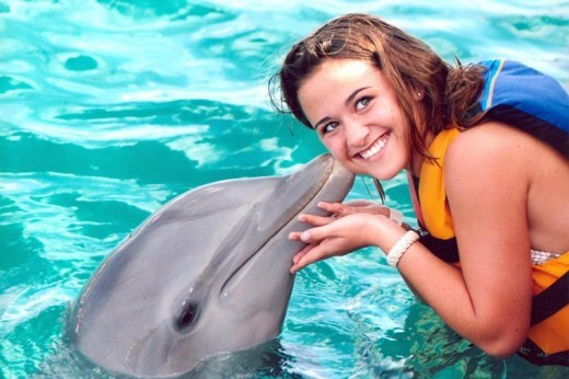 Swim with dolphins in the warm waters of the beautiful Caribbean Sea