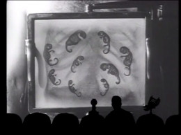 If you don't know what MST3K is I implore you to look it up