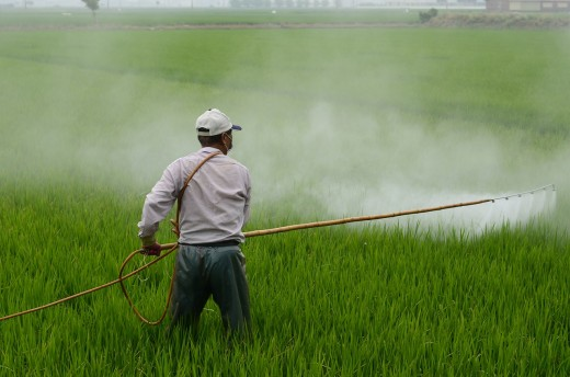 Dangerous pesticides are sprayed over the crops all across the United States.