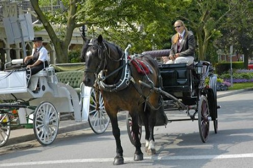 You will be surprised that the horse carriage can take in 4 adults and three children, two sitting on the laps. Our family did that on the beautiful bridal carriage.