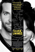 Silver Linings Playbook is a wonder of a movie
