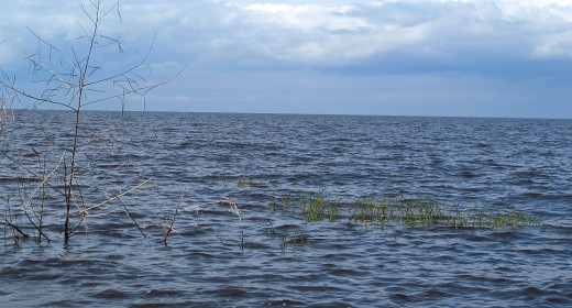 What death lurks at the bottom of Lake Okeechobee?