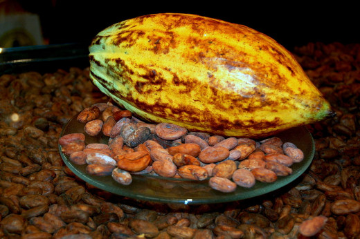 Inside the pod: cacao beans. Coffee also comes form beans!