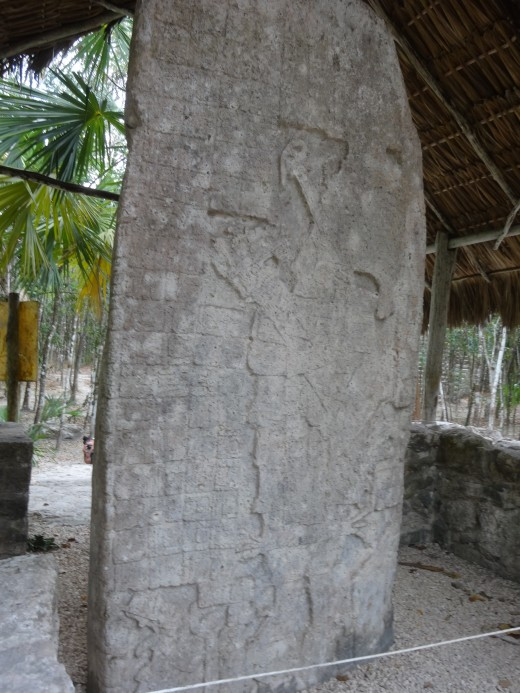 Stela 1, Macanxoc Group, Cobá, QR This stela has the longest writing found in Cobá. photo taken March 2015