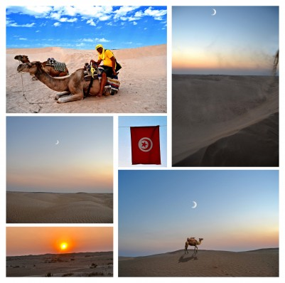 Tunisia is the second smallest country on mainland Africa.