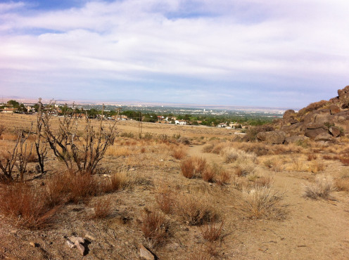 In the distance is the largest city in New Mexico, Albuquerque. What a booming metropolis!