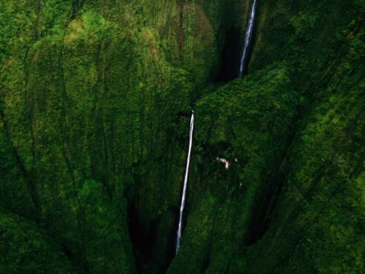 Oloʻupena Falls resides on steep volcanic coastal cliffs. Accessibility is limited to air or sea viewing. The falls start in inaccessible dense growth.