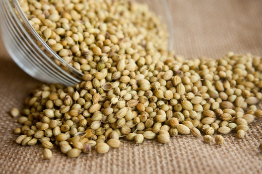Coriander or Cilantro Seeds - Coriander and Cilantro are the same thing.