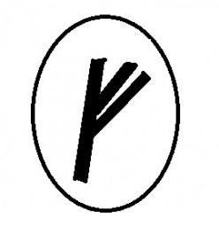 The Runes : Fehu