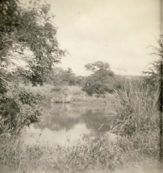 A pool on the river below our house at Buntinville