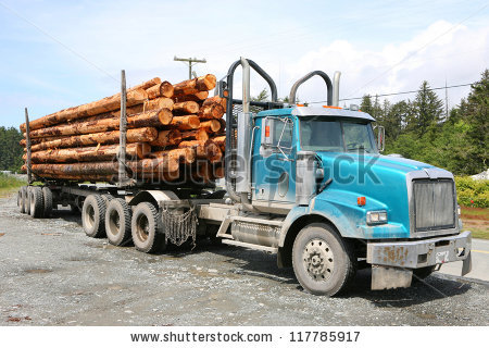 A log truck pulls in with another load of logs for the sawmill.