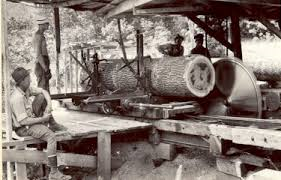A look inside an old sawmill.