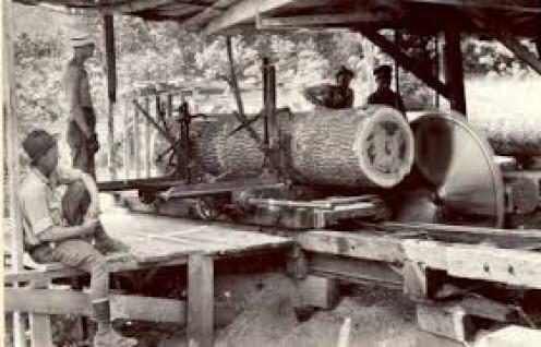 A look inside an old sawmill.