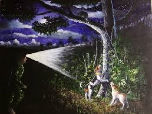 Painting of a raccoon up  a tree, dogs barking and hunter shining his carbide light on him.
