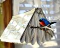Bird and Bird Stuff Crafts